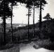 Kalkwerk Querfurt im Jahre 1956